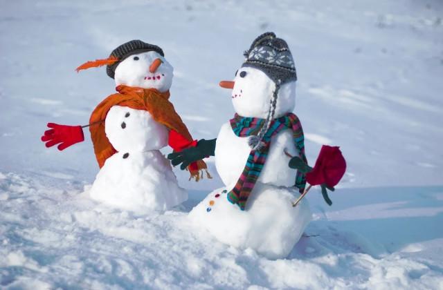 Приключения снеговихи